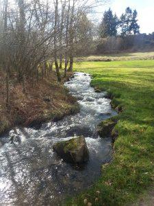 The Ardières river